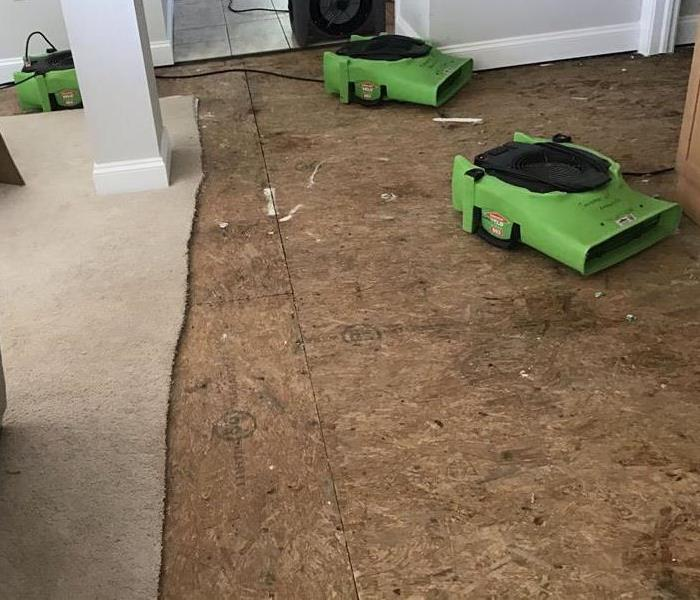 carpet removed and air movers drying living room